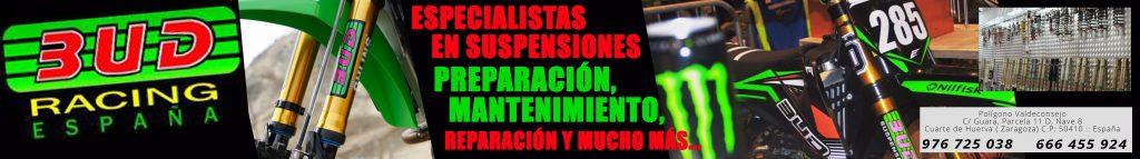 Banner Bud Suspensiones Ultimo1 1024×143 25